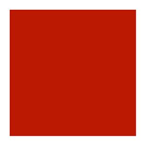 icon-globe